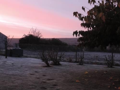 dawn frost