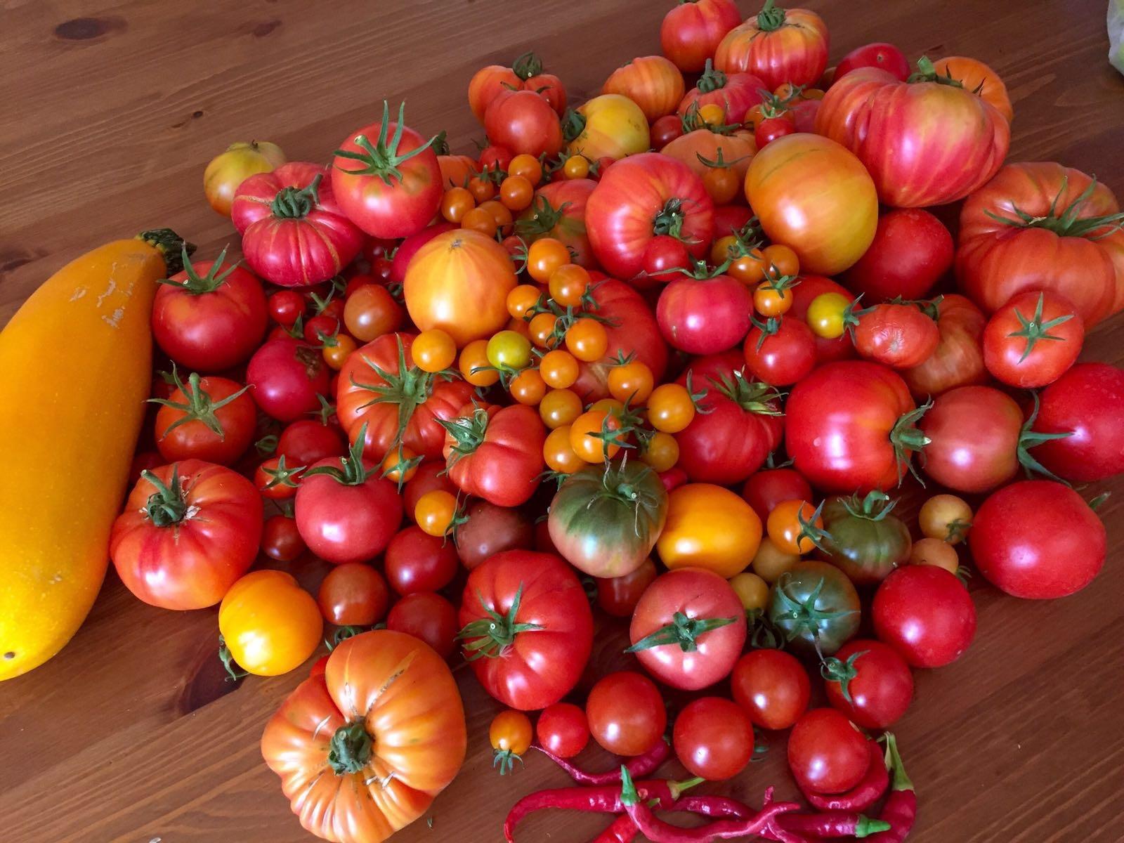 red-veg